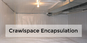 Crawl Space Repair Services